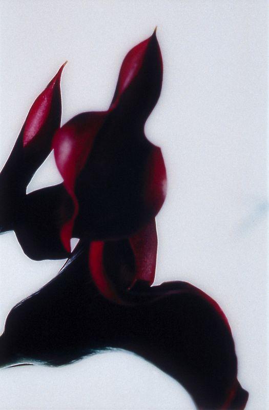 herausforderung (071) - 2002