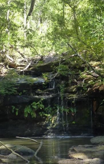 Waterfall into Berowra creek after rain