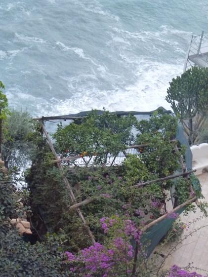 Captive citrus trees in Positano