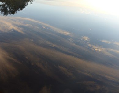 Reflections on the tea-brown waters of Myall Lakes