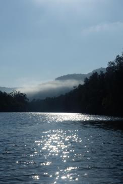 The last of the mist rising off Mangrove Creek.