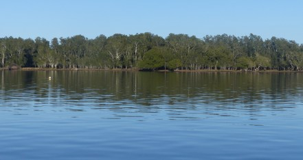 A side view of the levees beside the Camden Haven River