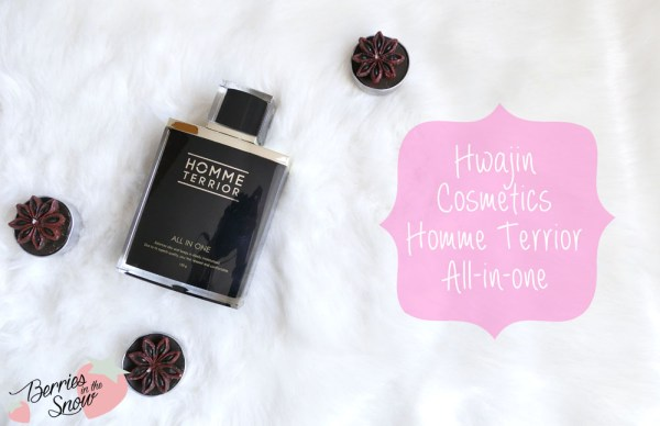 Hwajin Cosmetics Homme Terrior All In One