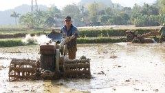 Voorbereiden van de rijstvelden