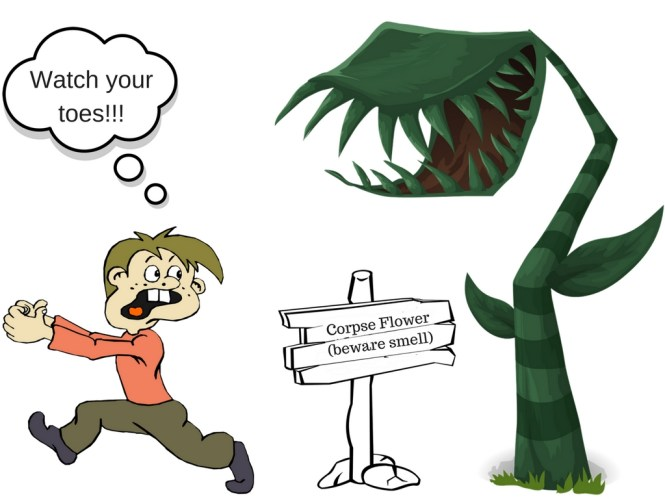 Corpse Flower Cartoon