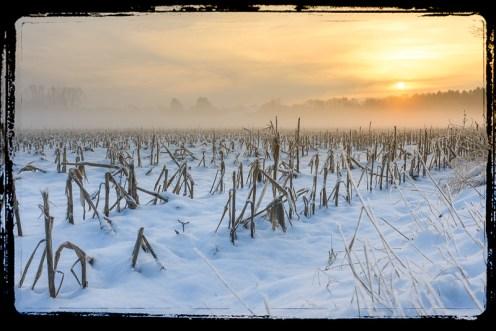 Achel winter-3013 copy border