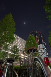 Shinjuku-2