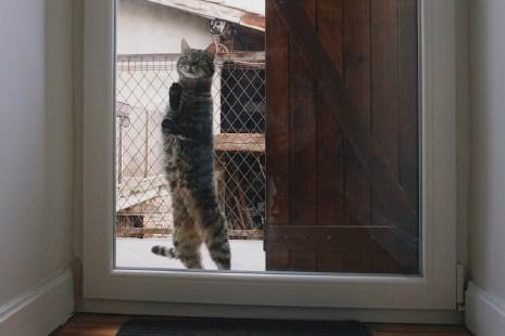 """Lundi 28 avril : """"Je veux rentrer !"""""""