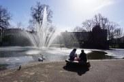 Jeudi 12 février 2015 : un petit air de printemps au Jardin Lecoq à Clermont-Ferrand