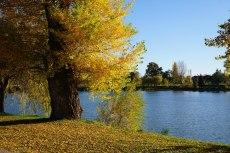2015-10-31-automne4