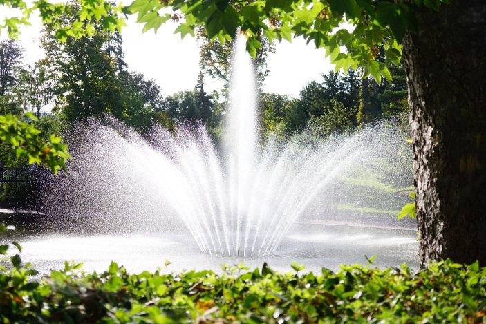 La fontaine du Jardin Lecoq