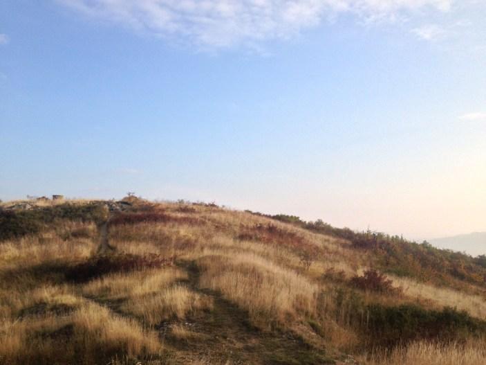 Sommet du Puy de Bane à Cournon