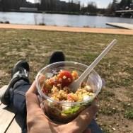 Salade au soleil sur les bords de l'Allier
