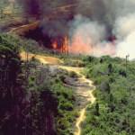 Luasan Lahan Terbakar di Riau Semakin Menggila, Bengkalis Masih Juaranya