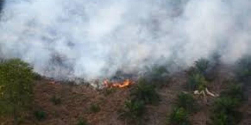 376 Titik Panas Muncul di Sumatera, 60 Hotspot di Riau