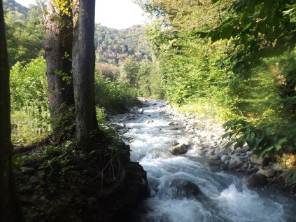 მდინარე ლაგოდეხისხევი, ლაგოდეხის ნაკრძალი