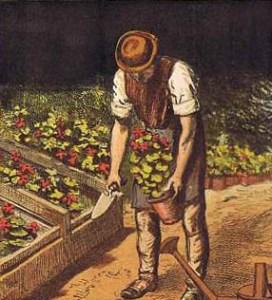 farbige Illustration: Gärtner mit Blumentopf und Schippe
