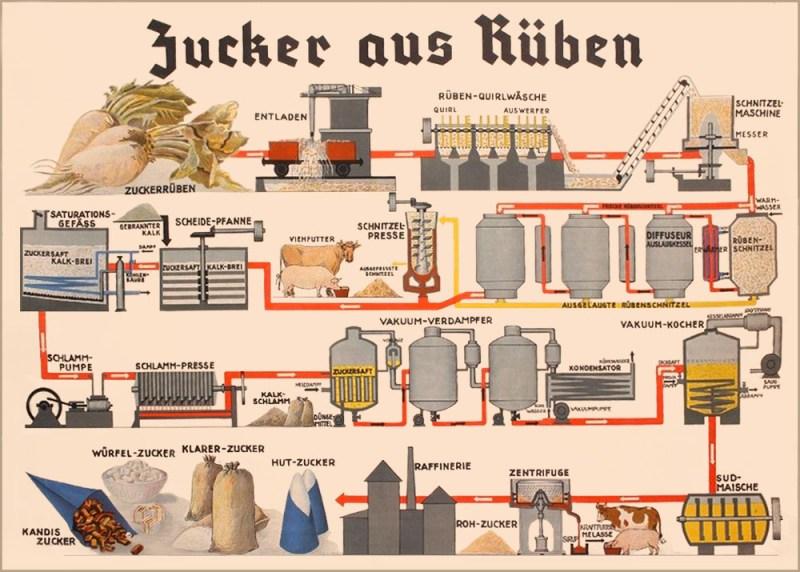 Zucker Herstellung