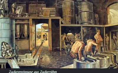 Der Zuckerhersteller: Rübenzucker