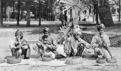 Schlangenbeschwörer, Indien, Kobras