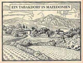 Tabakdorf, Tabakanbau, Mazedonien, Tabakfeld