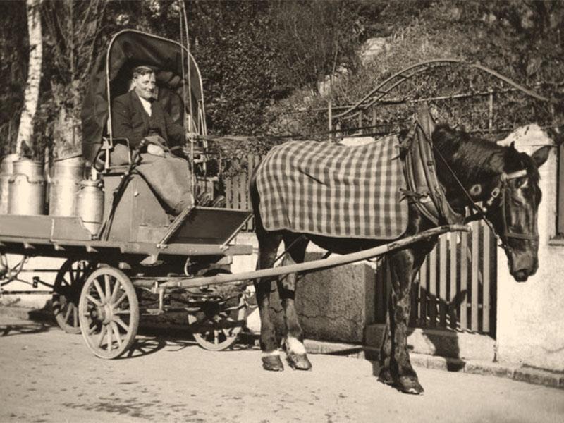 sw-Foto: Milchhändler liefert Milch aus mit Pferdefuhrwerk