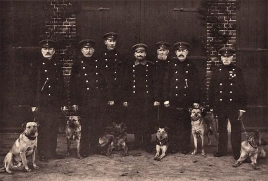 s/w Gruppenfoto: sieben Nachtwächter in Uniform mit Hunden