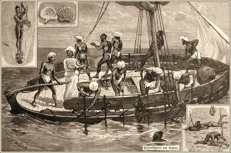 Holzstich: Boot mit Perlentauchen, einige im Wasser, währen die an Bord die Seile Händeln, mit denen die Taucher auf einem Stein stehend hinab gelassen und dann auch wieder herauf gezogen werden