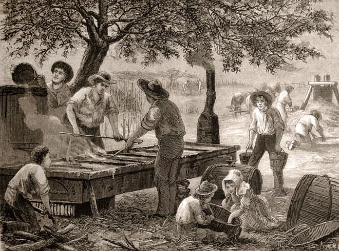 alter Stich: mehrere Männer verkochen in enem Becken mit mehreren Kammern, das von unten befeuert wird, Zuckersaft im Freien