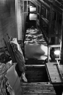 sw-Foto: Papier zum Trocknen