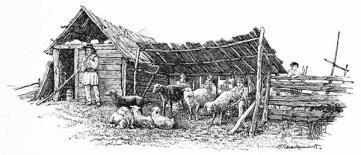 sw-illu: Schäfer mit Schafe bei einem Unterstand und einer Hütte