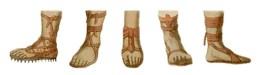 Farblitho: fünf verschieden Sandalenformen