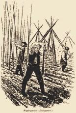 sw illu: Männer beim Errichten der Rankhilfen - 1820