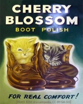 Plakat: Schuhpaar mit zwei darin eingekuschelten Kätzchen