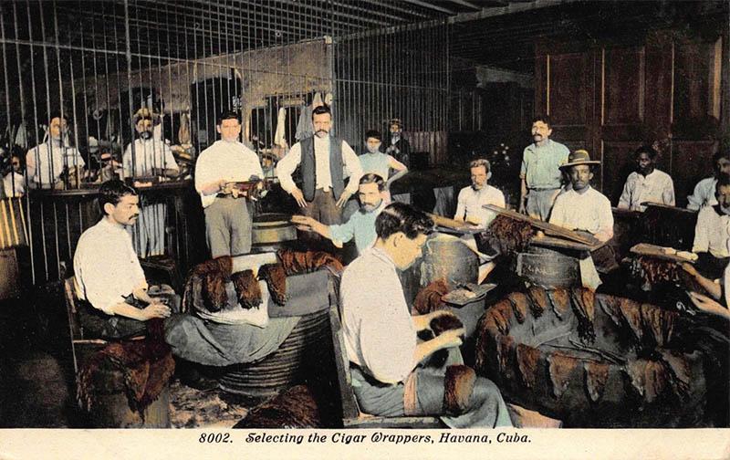 PK: Arbeiter in einer Zigarrenfabrik