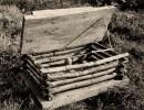 sw Foto: im Gras stehender Fangkasten mit geöffnetem Deckel