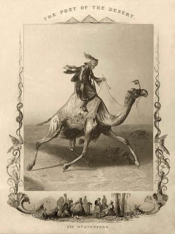 Stahlstich: Bote durchquert Wüste auf Dromedar reitend - 1840