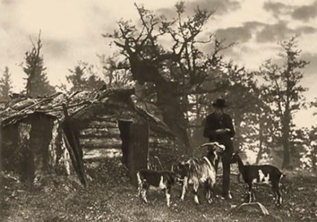 altes s/w Foto: Hirte mit Ziegen im Bayerischen Wald vor kl. Blockhütte
