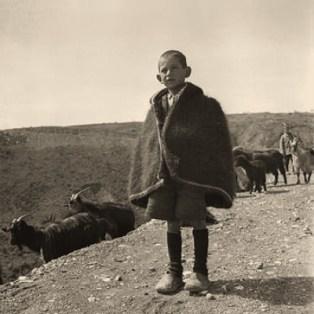 sw Foto: griechischer Hütejunge mit Ziegen im Hochland