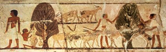 Farbfoto: 'Szene mit Ziegen' [Grabrelief von Sakkara, Detail]