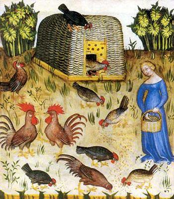 Buchmalerei: Hühnerverschlag aus Flechtwerk und Hühnervolk auf Wiese - 1390