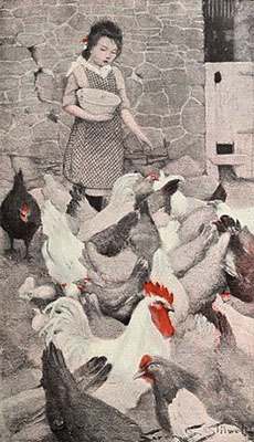 teilkolorierte Litho: Hühnerfütterung - 1901, USA
