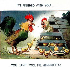 Cartoon: Henne mit Kücken und Vaterschaft leugnender Hahn ~1950, Engl.
