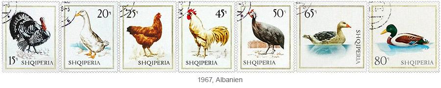 Briefmarkensatz: Nutzgeflügel (Truthahn, Gans, Huhn, Hahn, Perlhuhn, Enten) - 1967, Albanien
