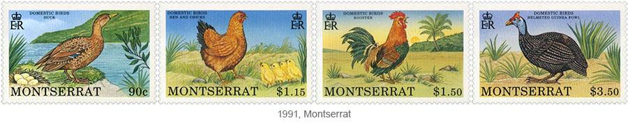 Briefmarkensatz: Nutzgeflügel (Ente, Henne, Hahn, Perlhuhn) - 1991, Montserrat