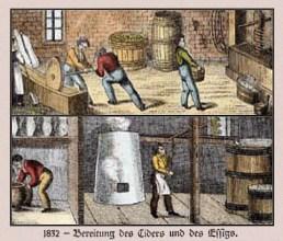 kolor. Zeichnung: Bereitung des Ciders und Essigs - 1832
