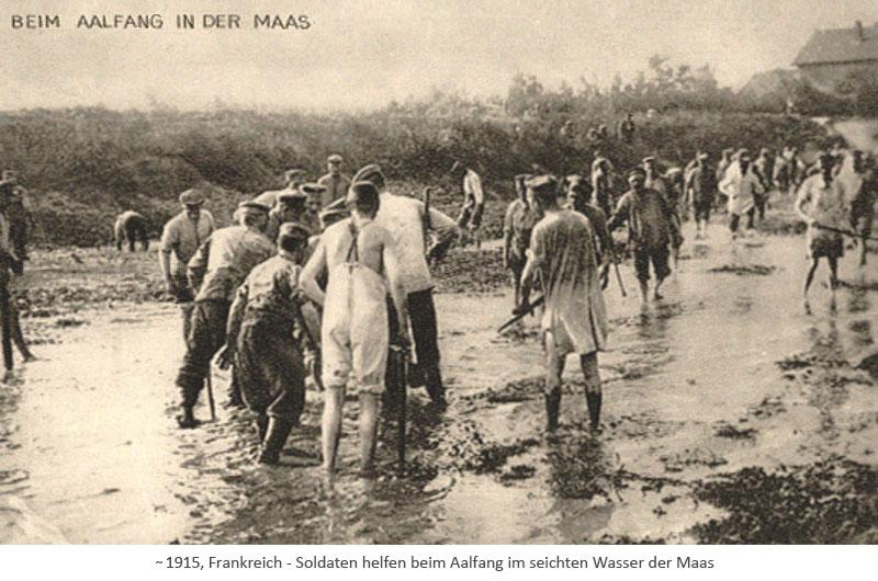 sw Fotopostkarte: Soldaten helfen beim Aalfang im seichten Wasser der Maas ~1915, FR