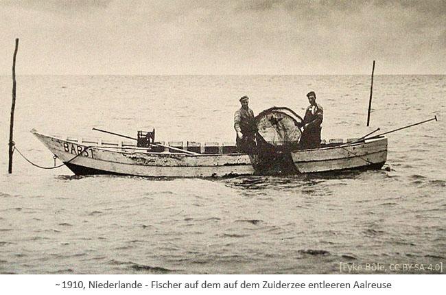 sw Foto: 2 Fischer in einem Boot auf dem Zuiderzee entleeren Aalreuse ~1910, NL