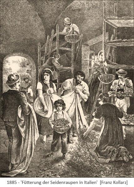 Kupferstich: Fütterung der Seidenraupen in Italien - 1885