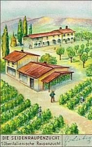 Sammelbild: Maulbeerplantage und Farmhäuser - 1937